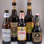 16 - Belgian and French Ale (additional examples)