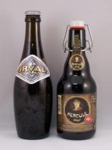 16e - Belgian Specialty Ale
