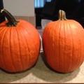 2 large Jack Lantern pumpkins
