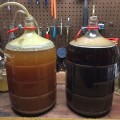 Kolsch & Belgian Dubbel at end of primary fermentation
