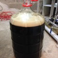 American Porter wort in carboy