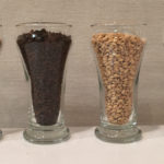Grain bill #2/2: Special B malt, Chocolate malt, White Wheat malt & Corn sugar