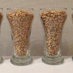 Grains 1/2: Belgian Pilsner malt, White Wheat malt, Aromatic malt, Munich malt