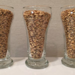 Grains: Belgian Pilsner malt, Munich malt, White Wheat malt