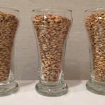 Grains: Belgian Pilsner malt, Munich malt, White Wheat malt