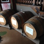 Oak casks for barrel-ageing
