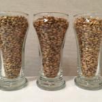 Grain bill #2: Biscuit malt, Special B malt, Vienna malt