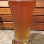 Tasting sample of the Saison